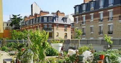 La plus grande ferme urbaine en toiture au monde… à Paris 15ème !