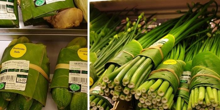 2 - Déchet plastique remplacé par végétaux