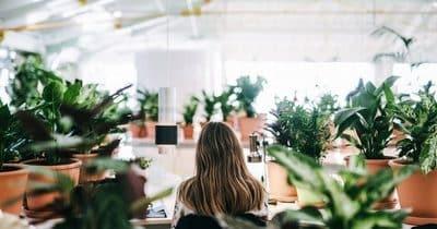 5 astuces simples et malines, pour être plus écolo au bureau !