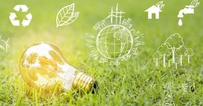 Découvrez le classement des pays les plus écologiques du monde !