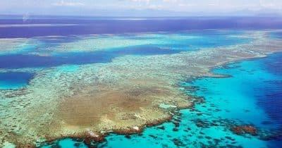 8 gestes simples à adopter pour protéger nos océans
