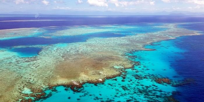Idées Vertes - pollution océans, recyclage