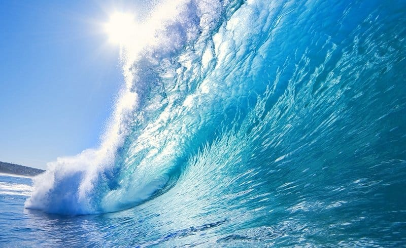 Gestes simples pour protéger les océans