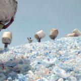Le tri sélectif et la lutte contre le plastique en Tanzanie