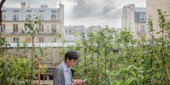 Recyclage Paris - Végétalisation Paris 2
