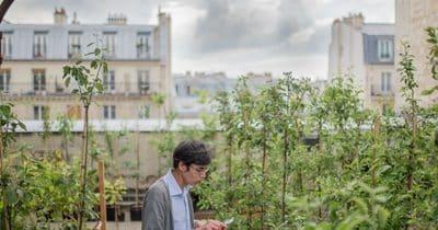 La végétalisation progressive de Paris est en marche : la capitale se met au vert !