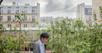 Permis, jardins, toits : les Parisiens ont carte blanche pour végétaliser