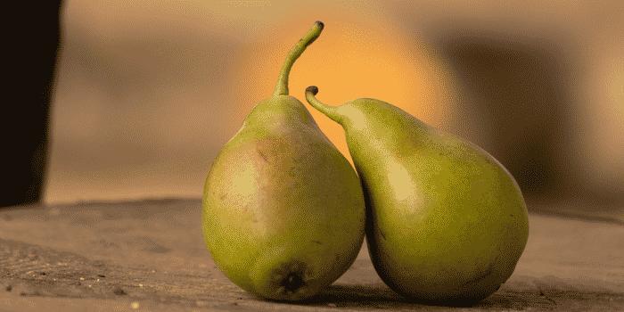 Gaspillage fruits les Joyeux Recycleurs2
