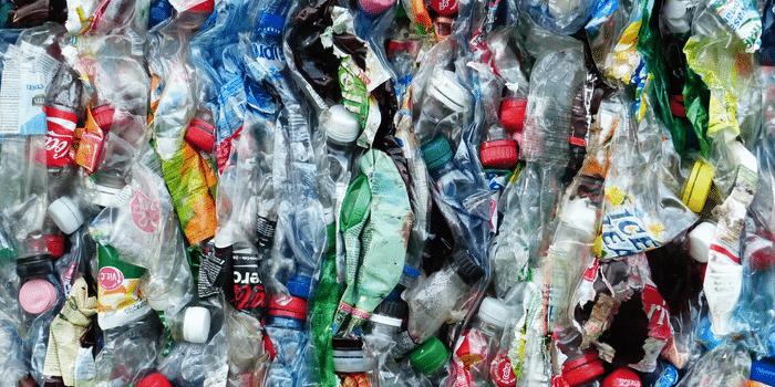 Bouteilles plastique les Joyeux Recycleurs2