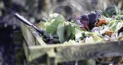 Le compostage de vos déchets verts et alimentaires à la maison et au bureau