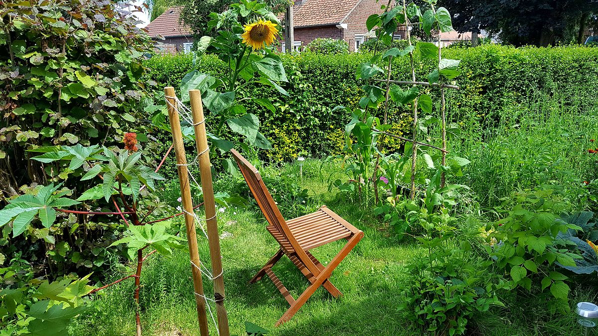 Comment cultiver son jardin ?