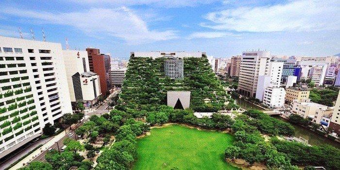 agriculture-urbaine-japon