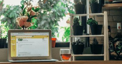 3 solutions pour intégrer des plantes dans votre espace de travail